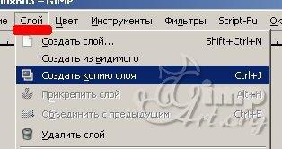 02_cherno-beloe-cvetnoe-foto
