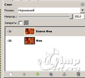 04_cherno-beloe-cvetnoe-foto