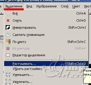 07_cherno-beloe-cvetnoe-foto
