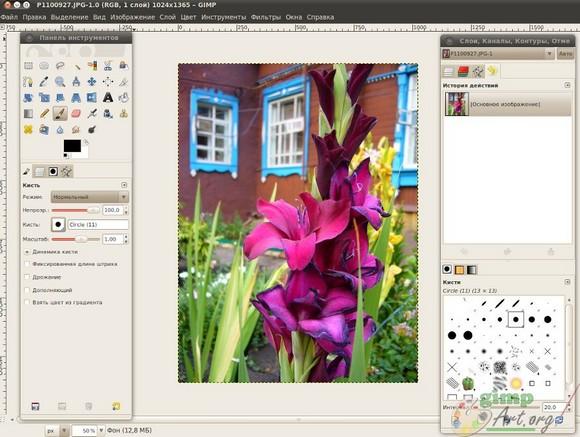 image1 - в программе гимп