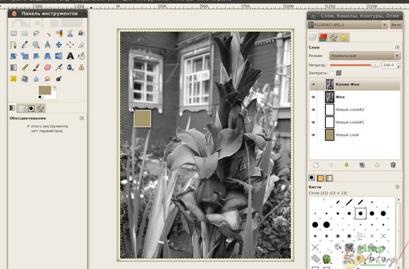 image15 - заливаем цветом