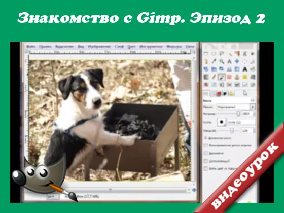 как подготовить фото для сети