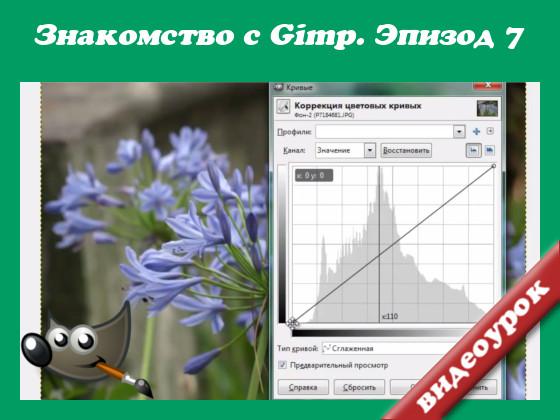 gimp применяется коррекция цветовых кривых