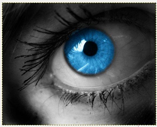 14_magic-eye